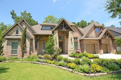Tomball Single Family Home For Sale: 30627 Raleigh Creek Drive