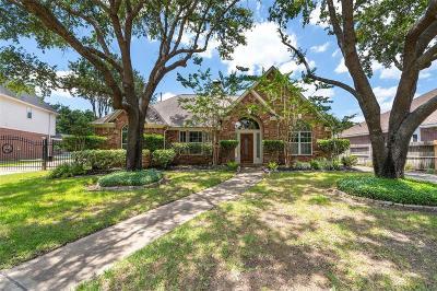 Houston Single Family Home For Sale: 18214 Treefork Lane