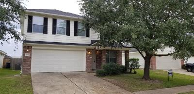 Katy Single Family Home For Sale: 19806 Brisbane Meadows Drive