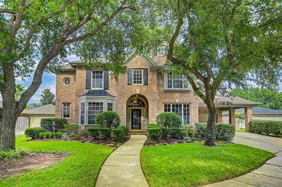 Sugar Land Single Family Home For Sale: 1911 Gray Birch Drive