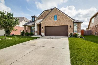 Rosenberg Single Family Home For Sale: 207 Conchola Lane