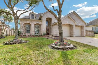 Houston Single Family Home For Sale: 11915 Newport Shore Drive