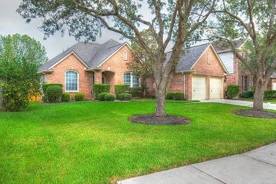 League City Single Family Home For Sale: 3208 White Sands Way