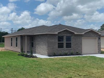 Galveston County Single Family Home For Sale: 1202 11 1/2 St