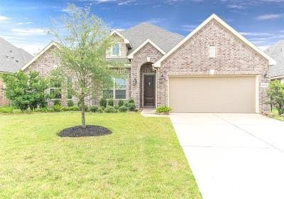 Fort Bend County Single Family Home For Sale: 20226 Bandera Lake Lane