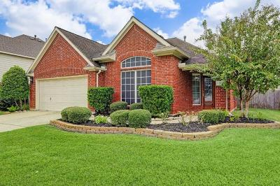 Tomball Single Family Home For Sale: 12010 Iris Canyon Drive