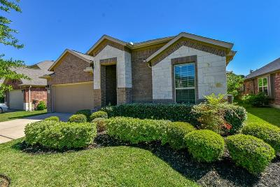 Spring Single Family Home For Sale: 3774 Paladera Place Court