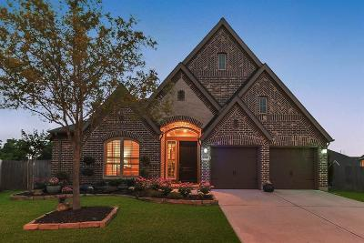 Sugar Land Single Family Home For Sale: 4726 Hickory Branch Lane