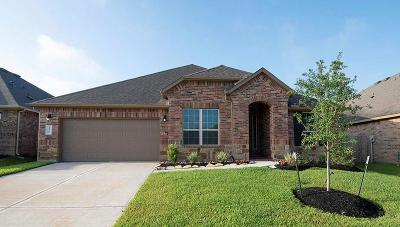 Single Family Home For Sale: 14141 Emory Peak Court