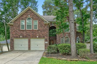 Single Family Home For Sale: 22 E Sterling Pond Cir Circle