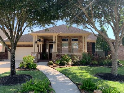 Friendswood Single Family Home For Sale: 2424 Garnetfield Lane