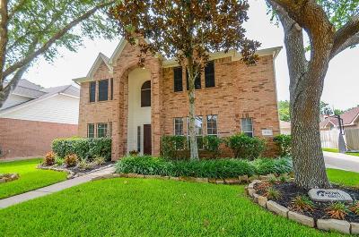 Missouri City Single Family Home For Sale: 9711 McKinney Lane