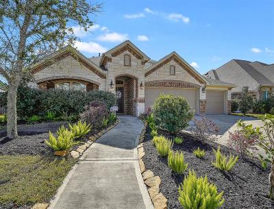 Pearland Single Family Home For Sale: 2005 Pine Ledge Road