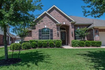 Dickinson Single Family Home For Sale: 4204 Parkview Terrace Lane