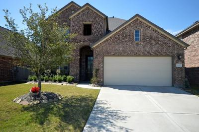 Single Family Home For Sale: 10819 Paula Bluff Lane