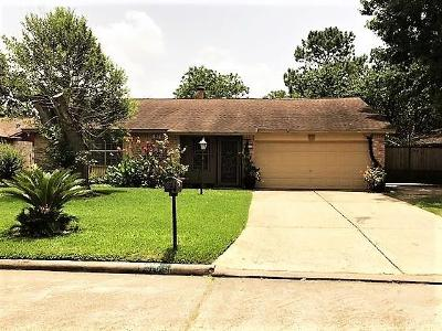 Houston Single Family Home For Sale: 1915 Delphi Lane