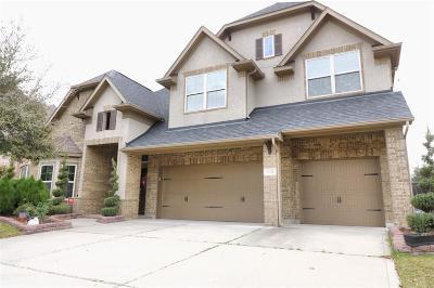 Katy Single Family Home For Sale: 10314 Justin Ridge Road