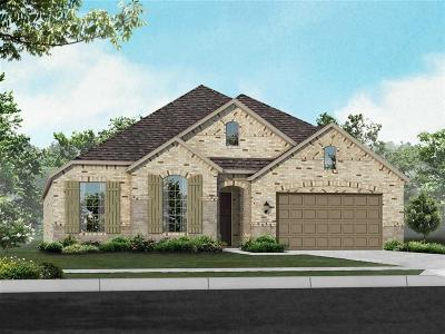 Conroe Single Family Home For Sale: 17460 Chestnut Cove Drive