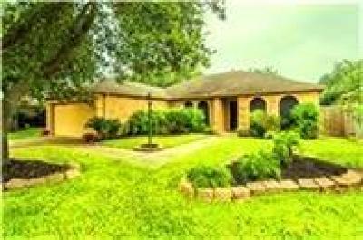 Katy Single Family Home For Sale: 3406 Wildhawk Drive