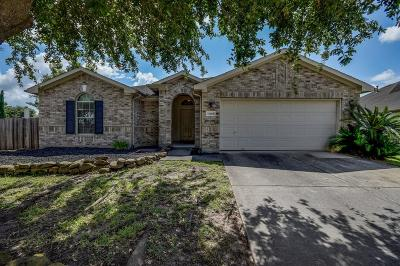 Tomball Single Family Home For Sale: 11902 Pitchstone Court