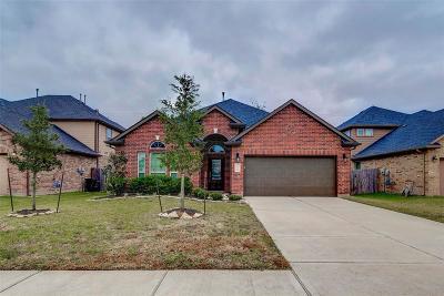 Richmond Single Family Home For Sale: 9802 Massanutten Lane