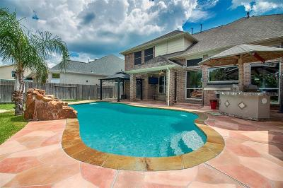Houston Single Family Home For Sale: 10215 Elizabeth Rose Drive