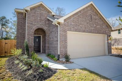 New Caney Single Family Home For Sale: 18936 Cicerone Drive
