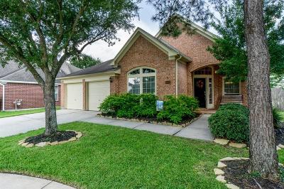 Houston Single Family Home For Sale: 16523 Lasting Light Lane