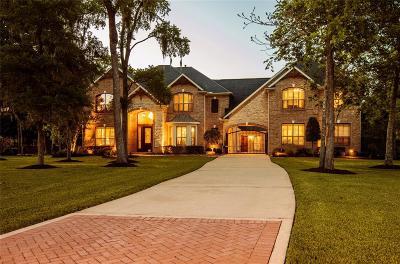 Missouri City Single Family Home For Sale: 60 Big Trail