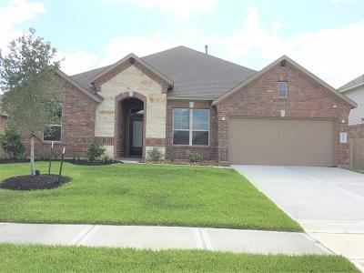 Katy Single Family Home For Sale: 4906 Vergano Villa Drive