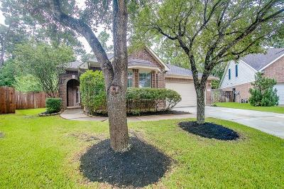 Humble Single Family Home For Sale: 17519 Buck Island Court