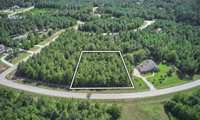 Montgomery County Residential Lots & Land For Sale: 26207 Misty Manor Lane