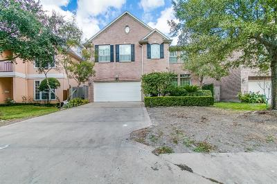 Bellaire Single Family Home For Sale: 4320 Effie Street