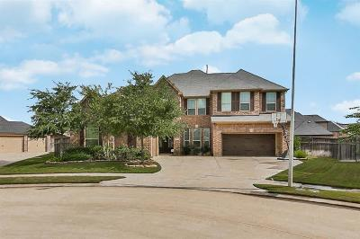 Fulshear Single Family Home For Sale: 5103 Junction Cliff Court