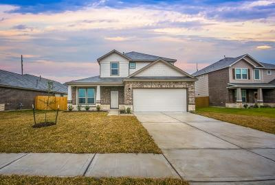Rosharon Single Family Home For Sale: 6922 Spring Vale Drive