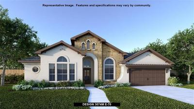Friendswood Single Family Home For Sale: 816 Sage Way Lane