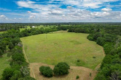 Austin County Country Home/Acreage For Sale: Bernard Road