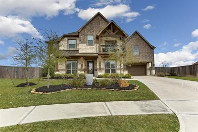Tomball Single Family Home For Sale: 13626 Butterfly Bush Lane