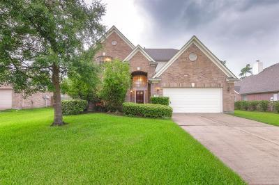 Houston Single Family Home For Sale: 11111 Archmont Drive