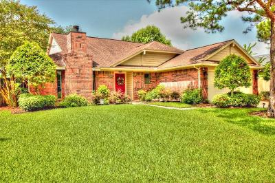 Pearland Single Family Home For Sale: 4906 Pecan Grove Drive