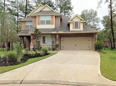 Spring Single Family Home For Sale: 10 Fury Ranch Place