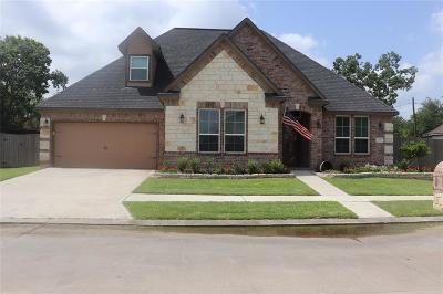 League City Single Family Home For Sale: 2205 Dove Haven Lane