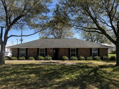 Katy Single Family Home For Sale: 24919 Roesner Road