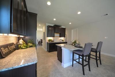 Katy Single Family Home For Sale: 28715 Forrest Pass