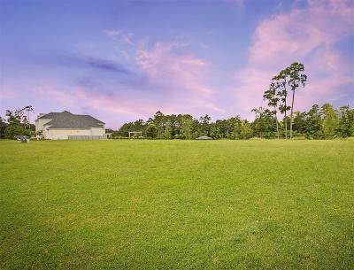 Houston Residential Lots & Land For Sale: 110 Kings Lake Estates Boulevard