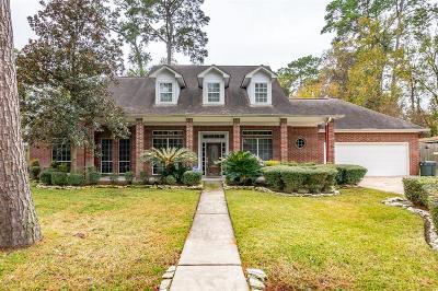 Houston Single Family Home For Sale: 17611 Wild Oak Drive