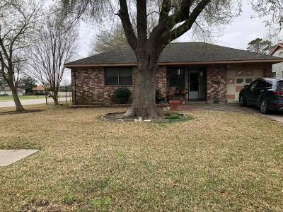 Houston Single Family Home For Sale: 10903 Concho Street