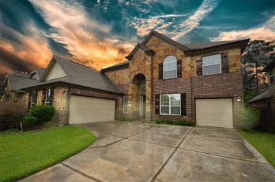 Porter Single Family Home For Sale: 24987 Stratton Meadows Drive