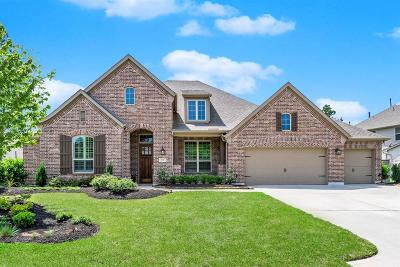 Montgomery Single Family Home For Sale: 173 River Wilde Drive