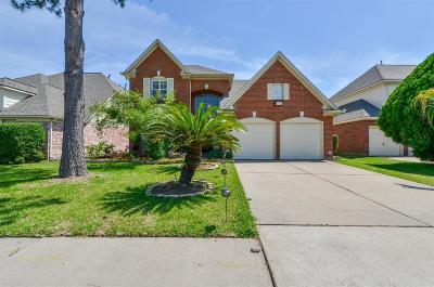 Houston Single Family Home For Sale: 13823 River Keg Drive
